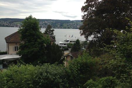 Spacious apartment with lake view & garden - Thalwil - Huoneisto