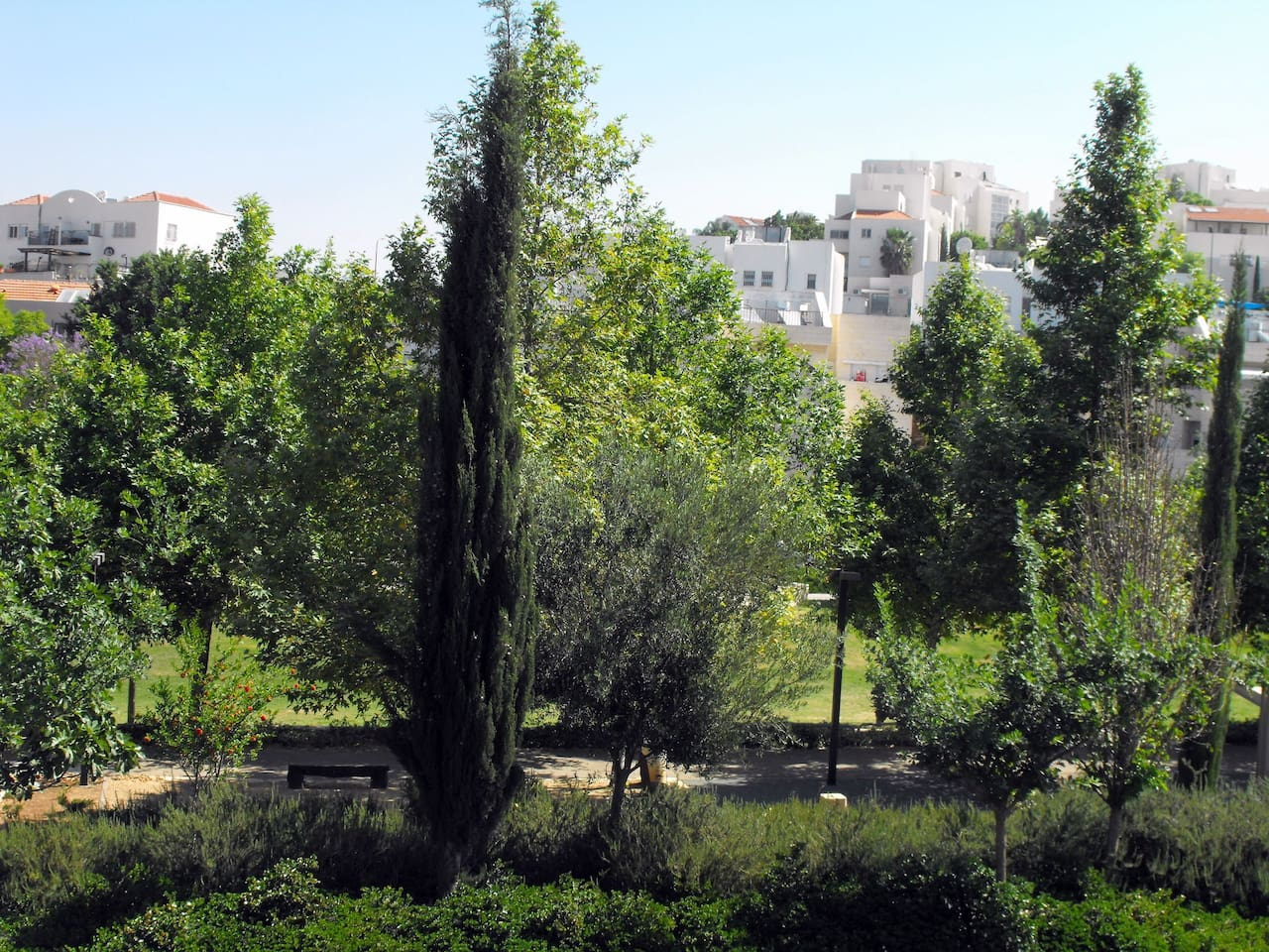 View to park