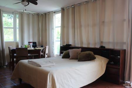 Aparto-estudio tranquilo y seguro - Heredia - Apartmen
