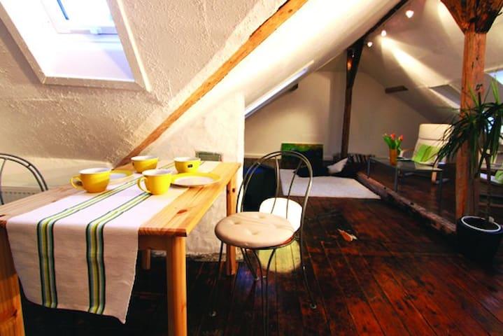 Zentrales und ruhiges Apartment - Göttingen - Apartament