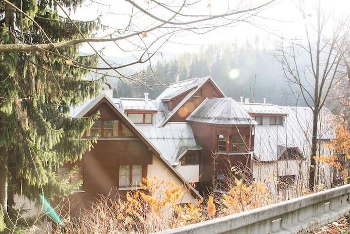 Center Špindlerův Mlýn Apartment 4+ - Špindlerův Mlýn - Huoneisto