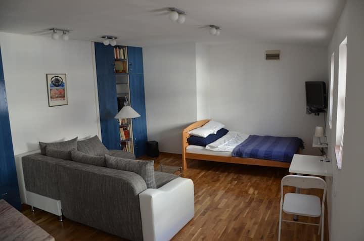 Jevrem apartment