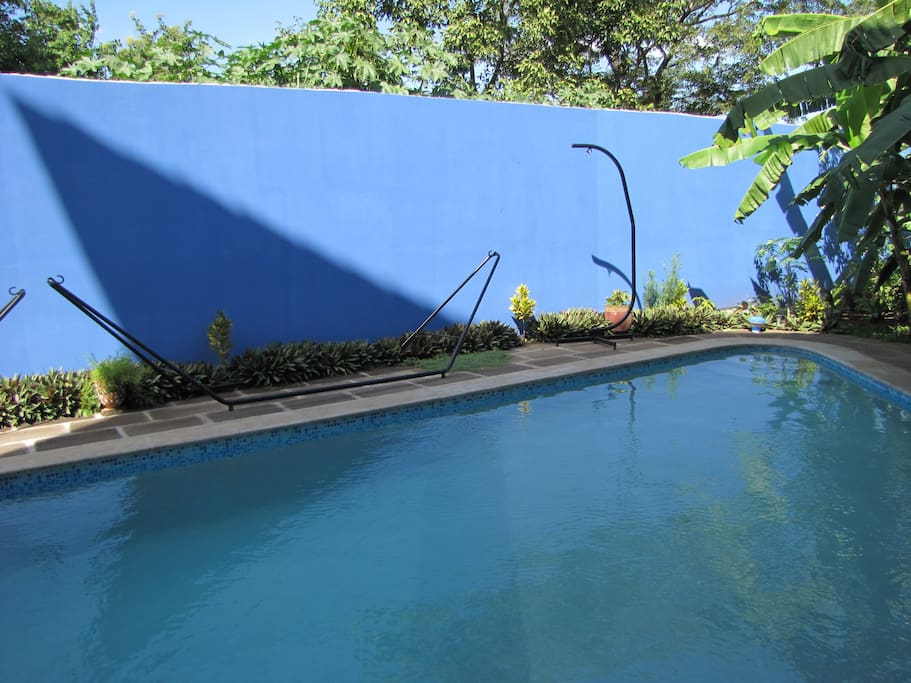 14,000 gallon lap pool with three levels of depth.