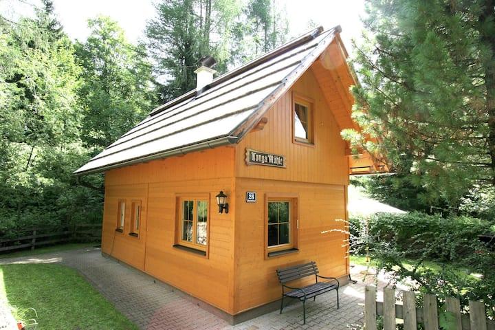 Gemütliches Ferienhaus in Kärnten nahe dem Skigebiet