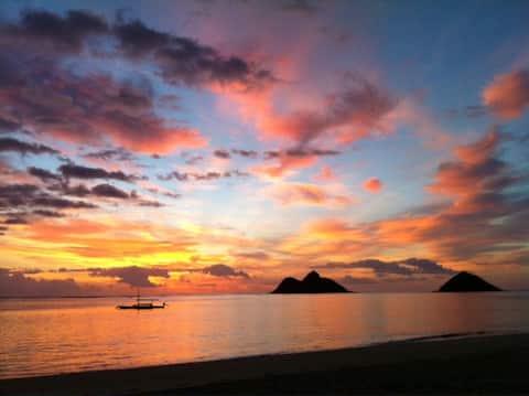 Unique Find Lanikai Beach, Legal Vacation Rental