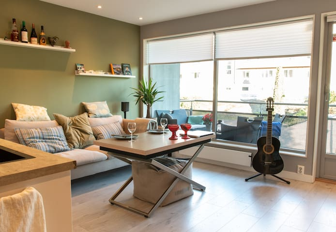 Modern and cosy apartment central in Oslo city