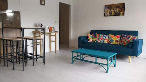 AppartementT2  entier 1 chambre 3 couchages.