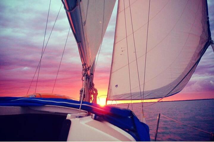Charter Sailboat Athena - Faial, Sao Jorge, Pico - Horta - Barco
