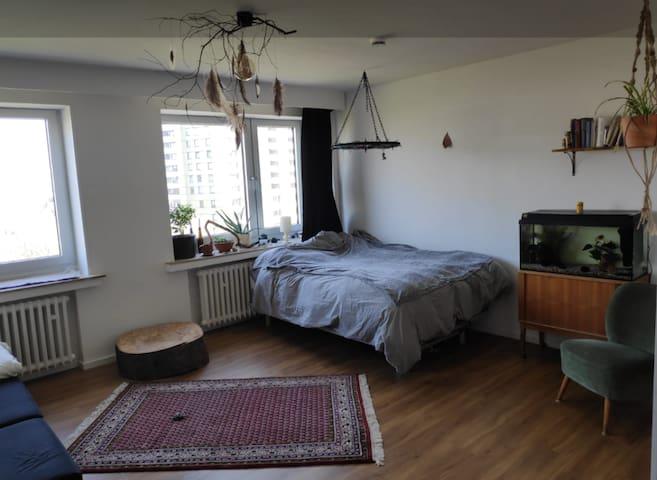 Zentrale Wohnung mit Rheinblick in Domnähe