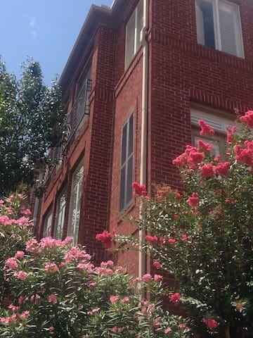 Gorgeous House at Medical Center, Rice University