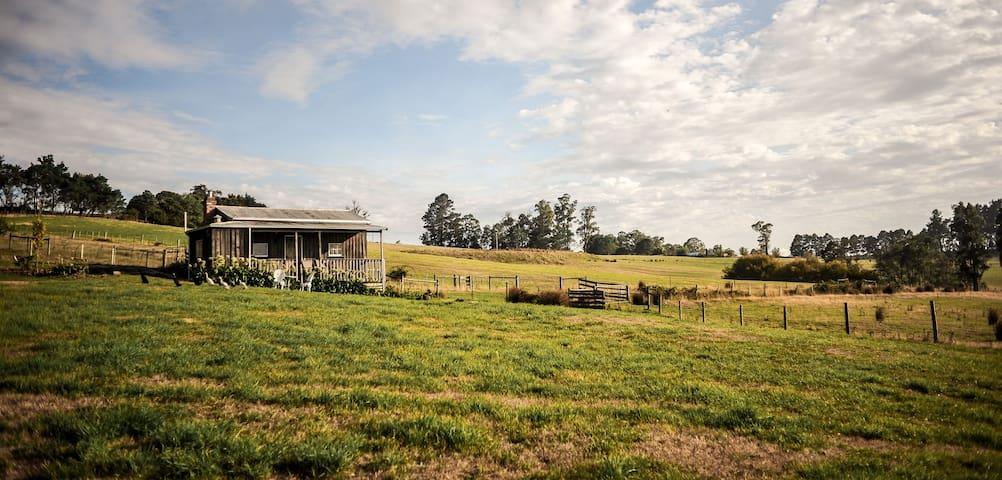Tamar Valley Vineyard & Farm Cottage