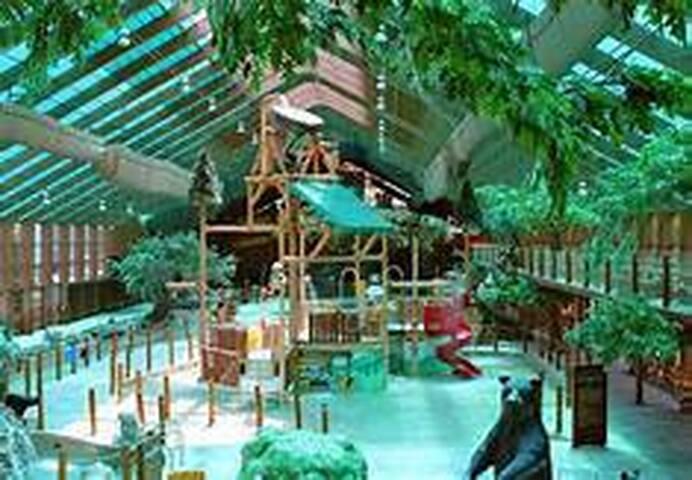 Year round indoor water park