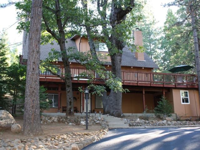 Paws and Reflect Cabin - Pet Friendly - Walk to Arnold Rim Trail - Sleeps 12