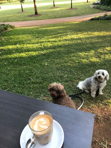 Coffee club 200mts away from 2brm unit. Dog friendly