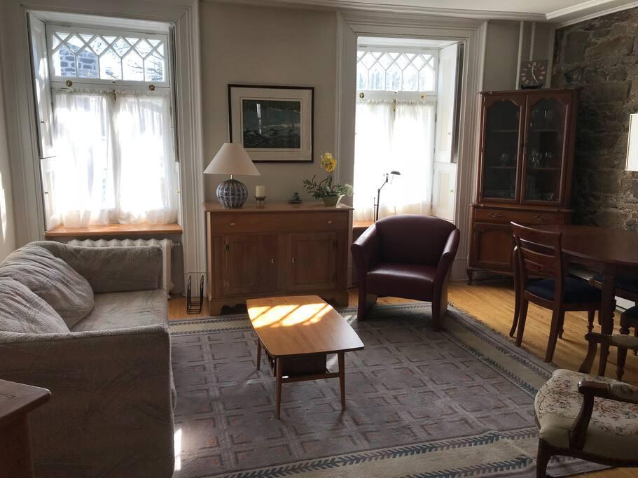 Salon avec canapé-lit / Living Room w hide-a-bed