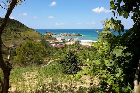 İmrenli Villa - İmrenli Köyü - Talo