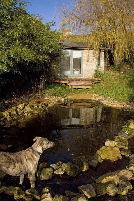 The exterior of the Summer House, looking at it across the pond (with Grace looking elegant).