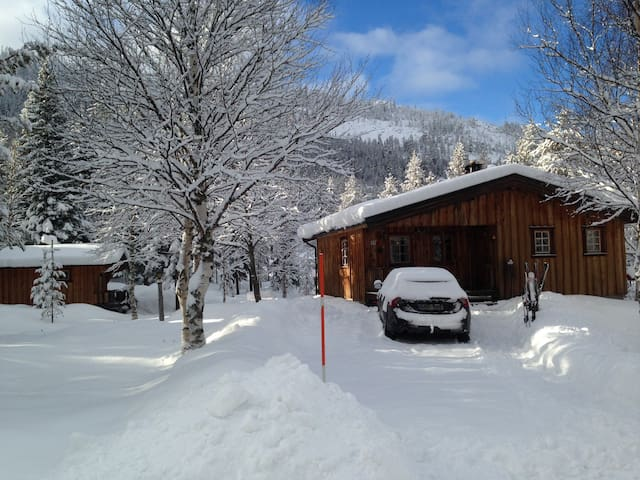 Cosy Chalet ! - Fish-Walk-Bike-Ski