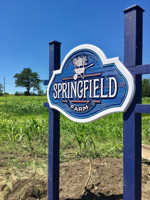 Welcome to Springfield Farm!