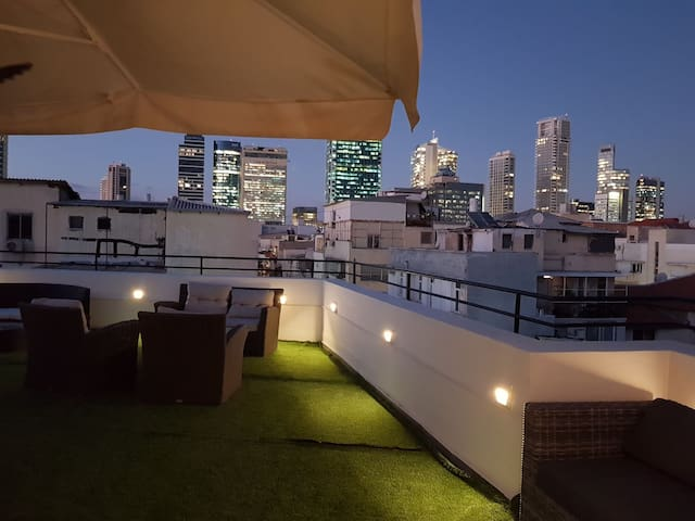 Huge private roof and designed apartment Florentin
