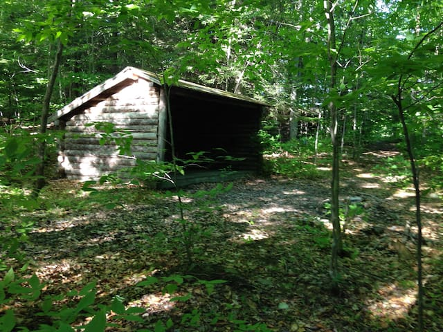 Adirondack Lean-Tos Group Camp-site 1 - Freeville - Cabane