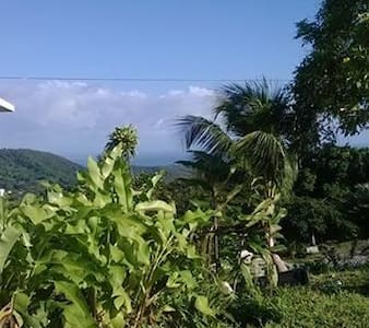 View to Live For - Luquillo