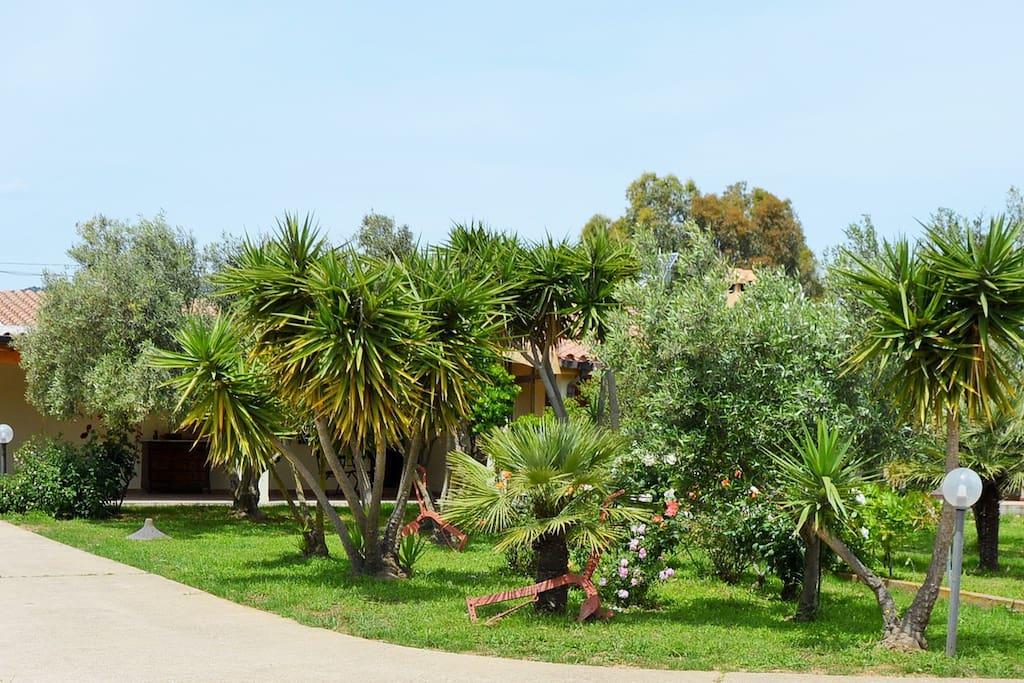 Vista casa giardino