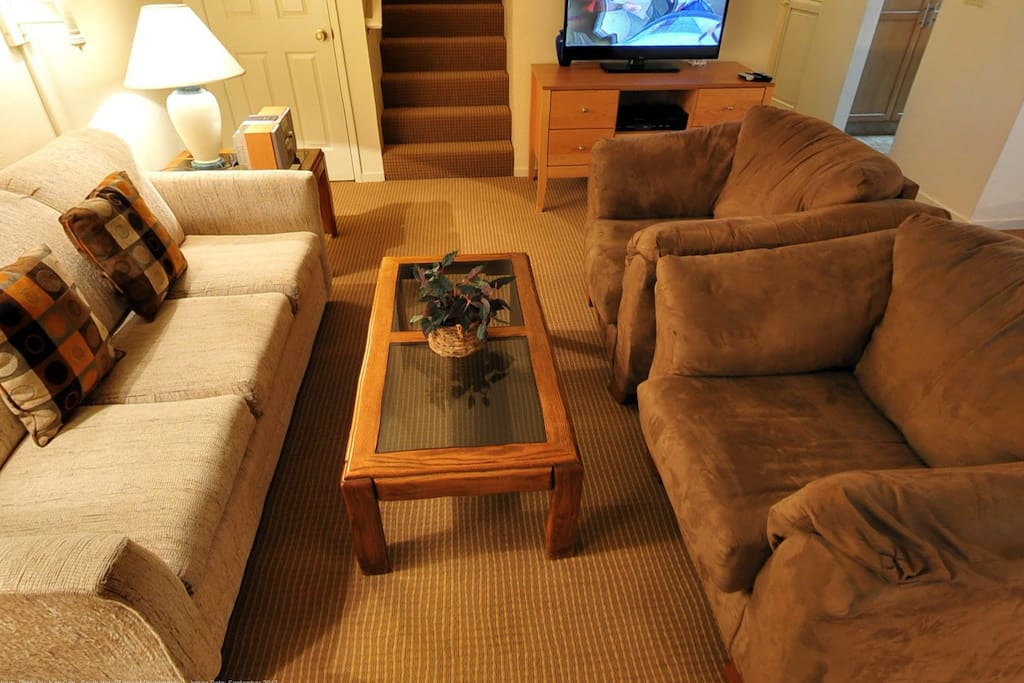 Living Room has a flat screen TV! Sofa bed for extra guests.