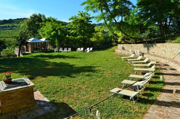 Relax nelle Colline Romagnole:Olivi - Musano - Lejlighed