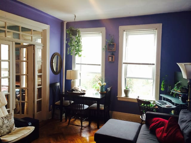Astoria gem 15min from manhattan apartments for rent for Aki kitchen cabinets astoria ny