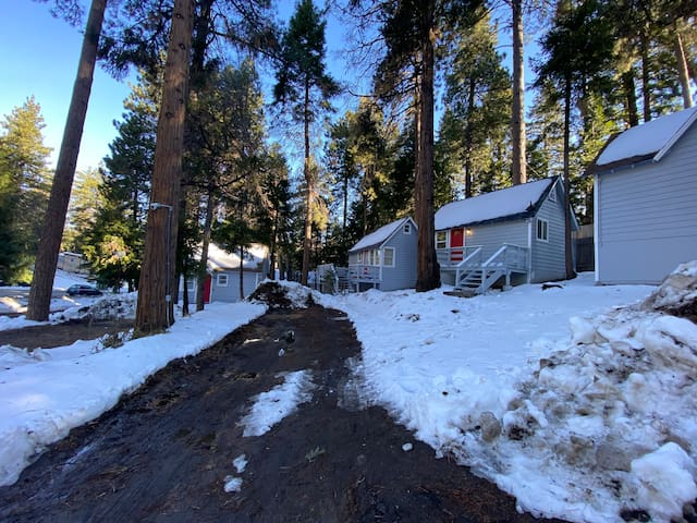 The Bear Cabins 3
