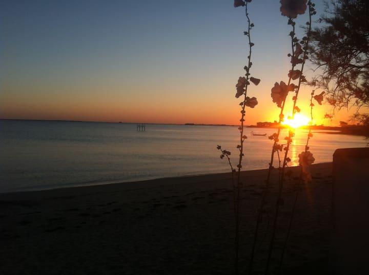 Flore-Amie, accès direct à la plage