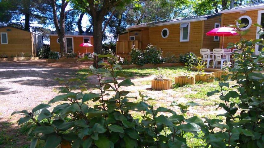 lodge bois dans un camping de charme 3 étoiles - Pézenas - Other