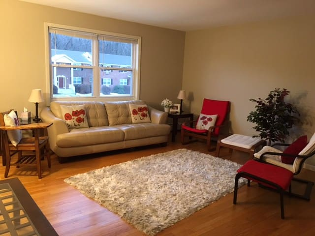 Upper-level Sunny 2-BR Apt in Amherst Townhouse - Amherst - Apartment