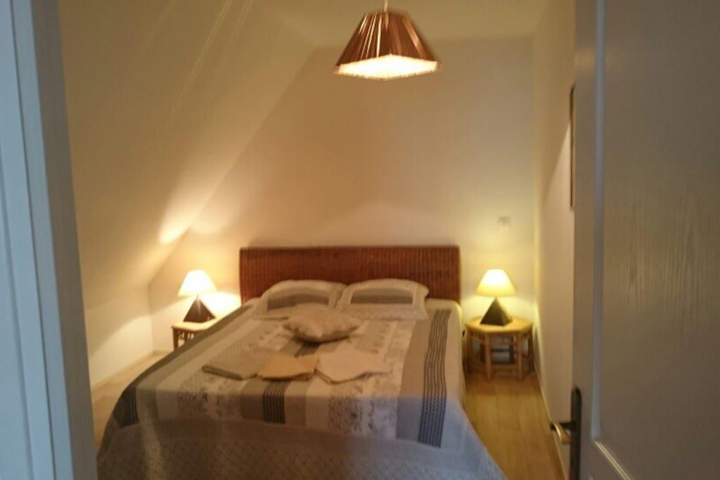 Chambre individuelle lit 160 /200  calme en plus une deuxième chambre à coucher  la même que l'on voit sur la photo lit la même grandeur surface de la chambre 18m carré