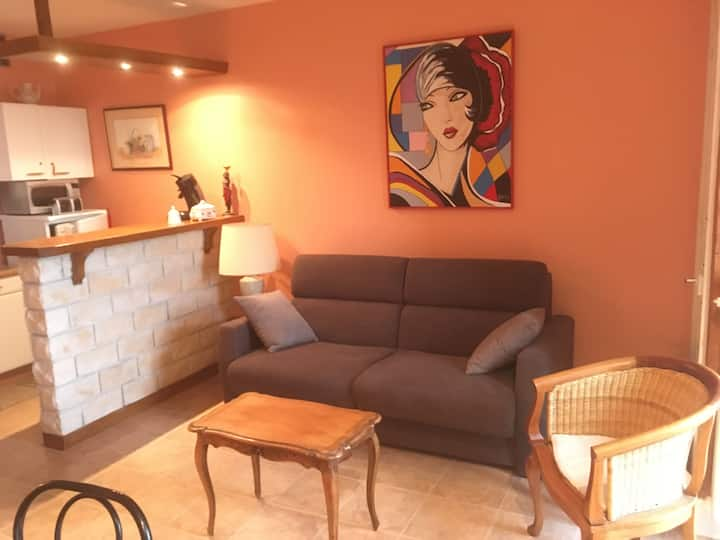 Appartment in Vichy City Center, with free WIFI