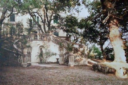 historic villa in italy - Trivento - 別荘