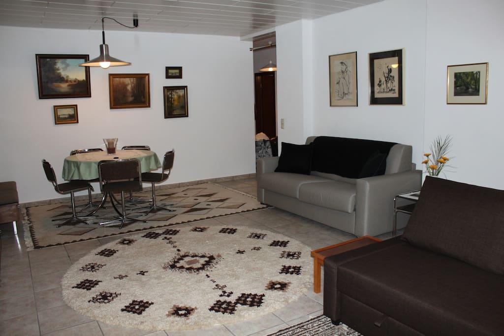 The living room and sleeper sofa.