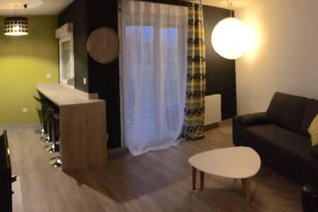 """""""Appartement Cosy"""" Idéal pour un séjour au Mans - เลอ มองส์ - อพาร์ทเมนท์"""
