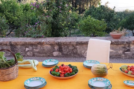 Bio Campagna Borgo dei Borghi 2016 - Sambuca di Sicilia