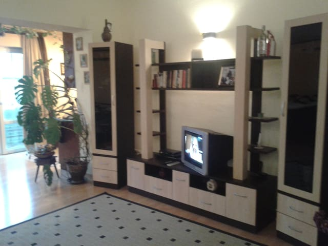 Amazing Apartment in City Center  - Tbilisi - Apartment