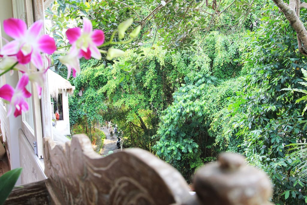 Relax on the antique lounge and enjoy the tranquil  vista overlooking the lane below.