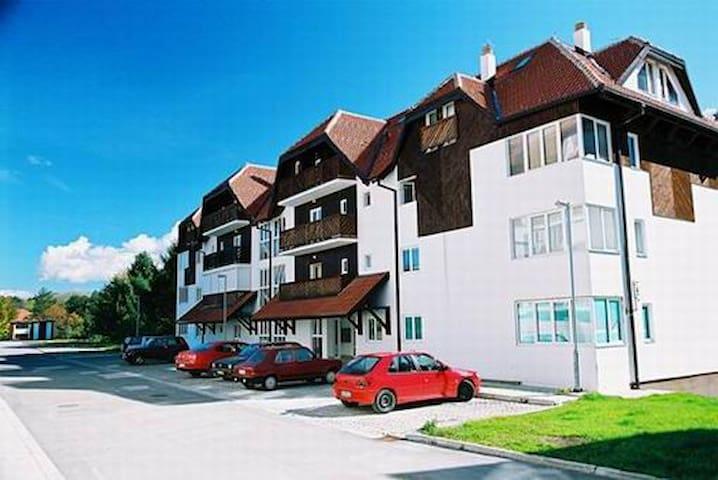 Home shine home - Zlatibor - Wohnung