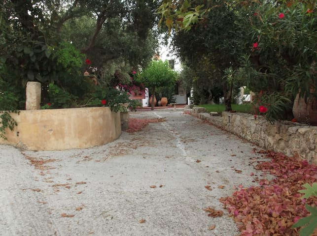 Orionas Village - Apartments for rent near Chania - Daratsos - Apartment