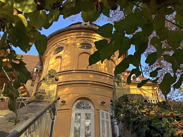 Art Nouveau Villa Souterrain flat - Nuremberg - Apartemen