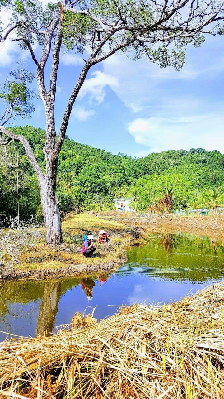 Mangrove Tilapia Farm