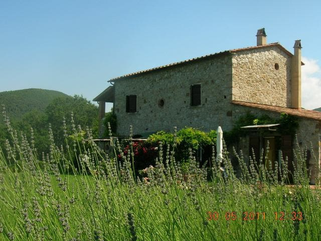 Cheap Holiday in Tuscany Farmhouse! - Castellina Marittima - Apartment