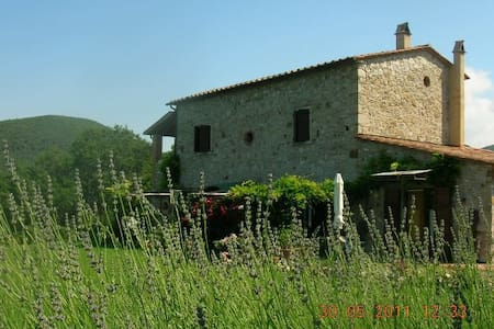 Cheap Holiday in Tuscany Farmhouse! - Castellina Marittima