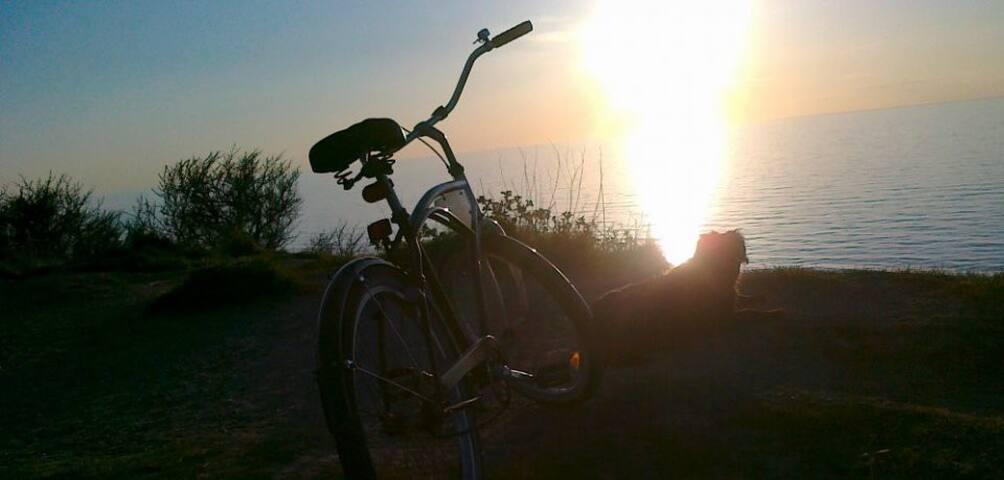 Værtens cykel og hund til solnedgang ved Gilbjerghoved