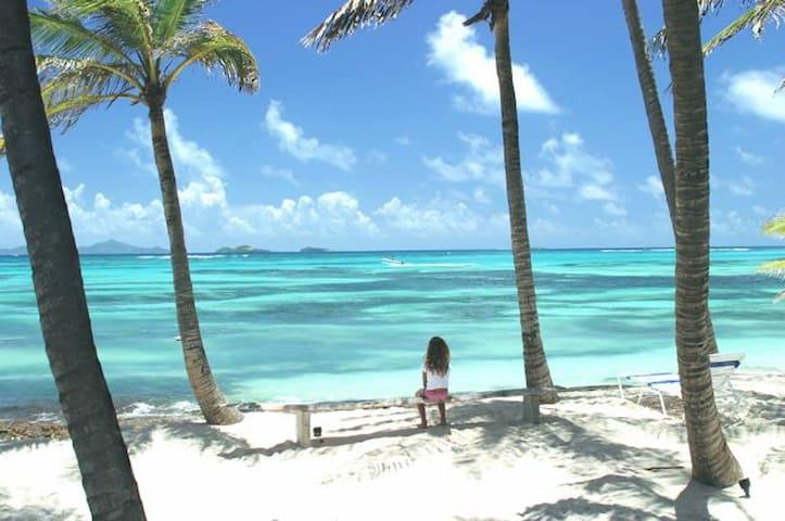 Palm Island Villa in the Grenadines - Grenadines - Talo